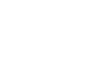AmeriWater white logo