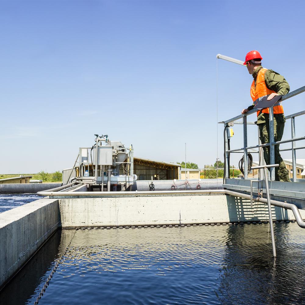 bike, family